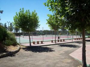 padel y tenis